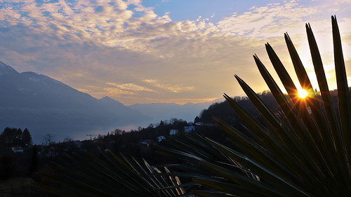 lagomaggiore ticino tessin gordola gordemo scalate sunset tramonto palme
