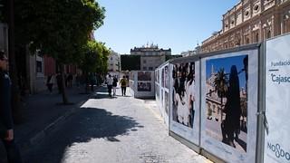 VI Muestra de fotografías vineladas en la Semana Santa de Sevilla (6)   by fundacioncajasol