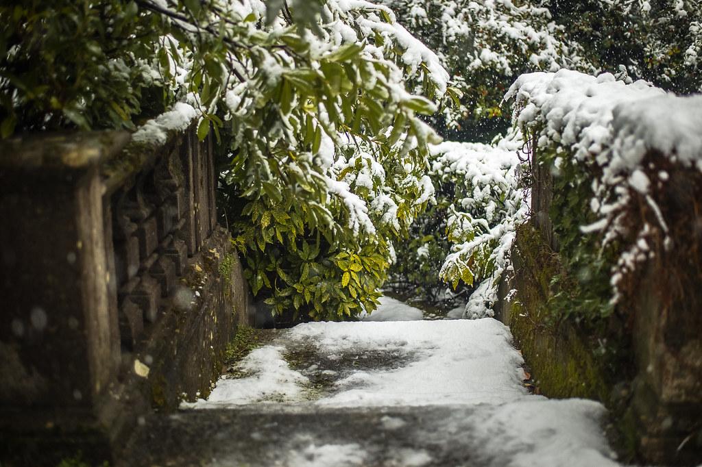 beautiful cities snow 16:49:09 DSC_6298