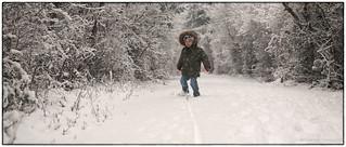Winter Wandering   by westcoastcaptures