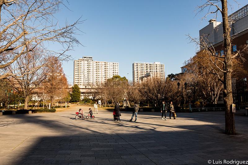 Parque Hamacho en invierno