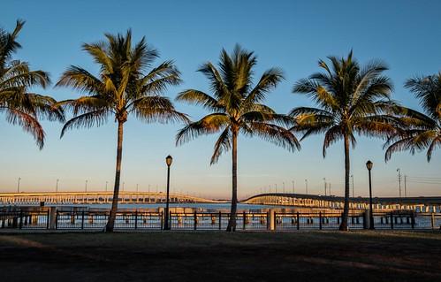 bridges florida goldenhour landscape peaceriver puntagorda river sunrise tamiamitrail