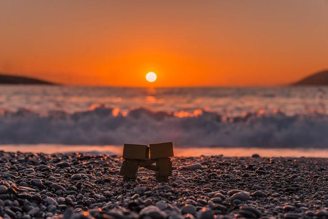 Danbos at sunset