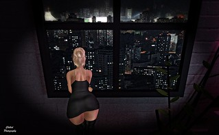 Looking Out Over The City