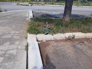 parcheggio san francesco (2)