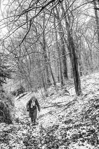 Chinnor Hill Nature Reserve | by FlickrDelusions