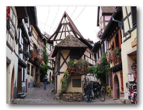 Eguisheim, Favorite French Village | by natureflower photography