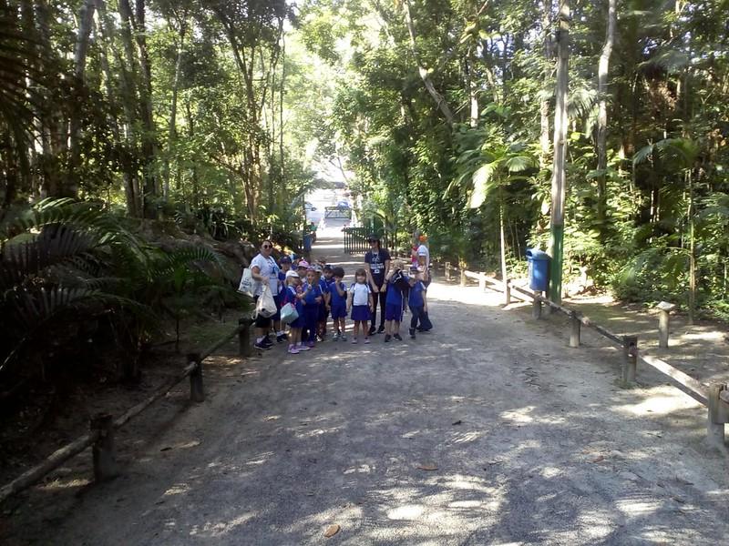 Visita do Período Diversificado (EI) ao Horto Florestal
