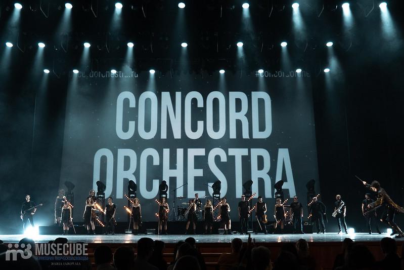 Concord-40