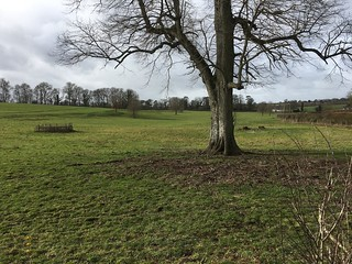 Site of the house Jane Austen grew up in Overton Circular walk