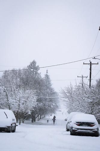 20190209 snowzilla-4 | by schnell foto