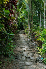 Yap, the Island of Stone Money