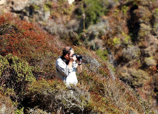 Capturing California