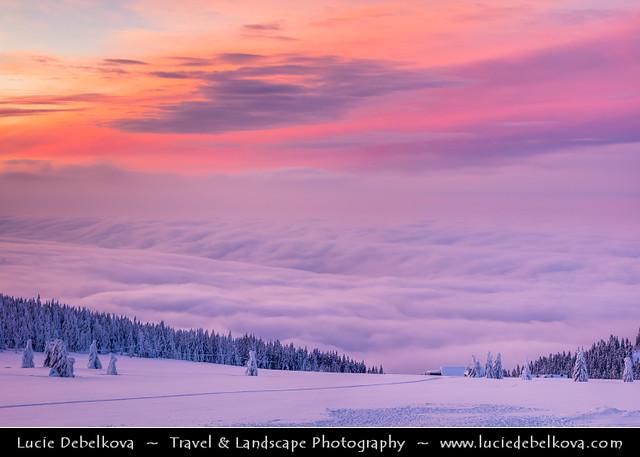 Czech Republic - Krkonoše - Winter Wonderland at Sunrise