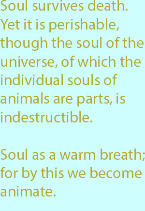 7-1  soul as a warm breath; for by this we become animate