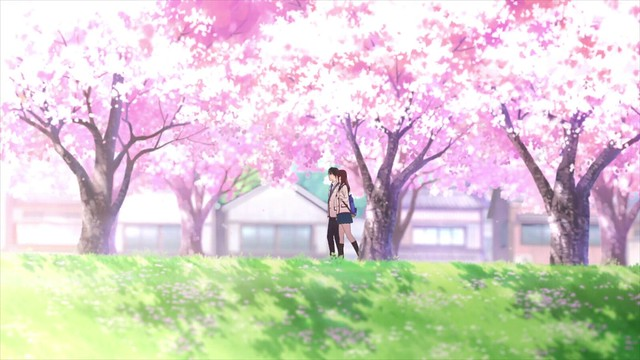Kimi No Suizō O Tabetai I Want To Eat Your Pancreas Movie Review Reflection And Full Recommendation The Infinite Zenith