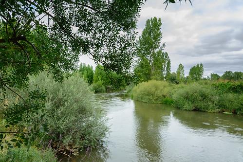 Río Duero en Ituero | by gr14lasendadelduero
