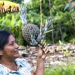 #ProyectoIAPA | En Puerto Leguízamo, Colombia, en noviembre de 2017, se desarrolló el Diálogo Intersectorial del paisaje norte liderado por el Programa Trinacional Colombia - Ecuador - Perú y el Proyecto Integración de las Áreas Protegidas del Bioma Amazónico, IAPA, en el que se discuten las mejores estrategias para trabajar conjuntamente en el desarrollo productivo sostenible.   El Corredor Trinacional de Conservación y Desarrollo Sostenible PNN La Paya, PN Güeppí-Sekime y RPF Cuyabeno o Paisaje Norte está ubicado en la frontera compartida por Ecuador, Colombia y Perú en la cuenca media del río Putumayo, comprende alrededor de 4 millones de Ha y es una de las zonas estratégicas de conservación más importantes. #JuntosPorLasÁreasProtegidas  Más información en www.portalces.org/iapa