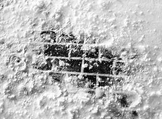 Bricks Fighting through Snow   by VBuckley.com