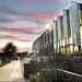 Templeman Library shines in the sunset. University of Kent