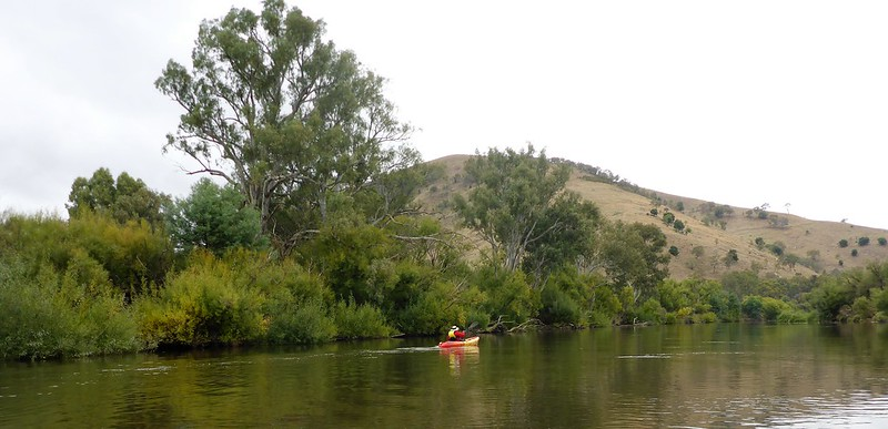 Mt Alfred from the Murray