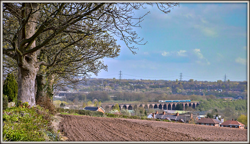 class67 skip frodsham viaduct tree landscape spring 2019 1d34 transportforwales cheshire 67014 townfieldlane farmland hedgerow field