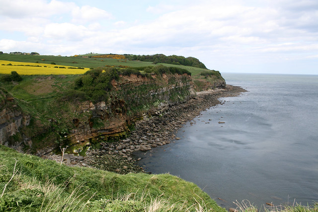 The coast at Cloughton Wyke, North Yorkshire