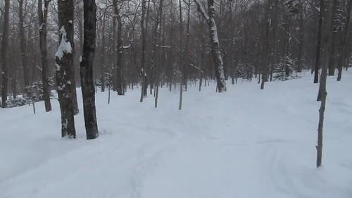 2019 canonpowershots95 february2019 skiing snow stowe sue vermont video winter