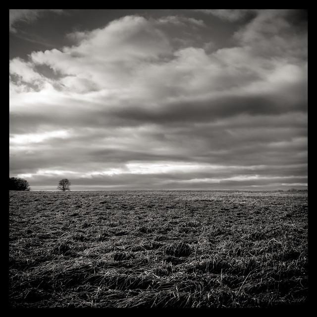 Over Horizont, film
