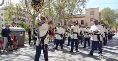 procesion-domingo-de-ramos-tomelloso-la-borriquilla-16