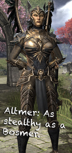 Altmer | by losttransit