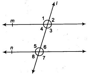 Lines and Angles Class 9 Notes Maths Chapter 4 17