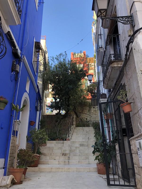 Alicanten kokemuksia