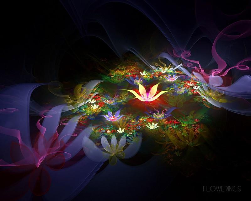 Обои цветы, пространство, пелена, темный фон картинки на рабочий стол, фото скачать бесплатно