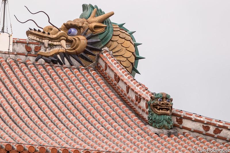 Detalles del Seiden, visto por detrás