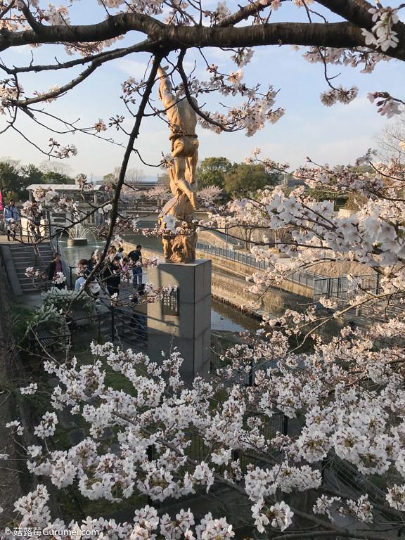 打工度假-京都生活-賞花、野餐-077