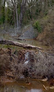 Rapids under a fence | by cizauskas