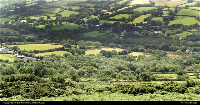 Widecombe-in-the-Moor from Bonehill Rocks DSC00711