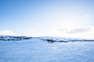 DSC_9656 | by adventurelandlapland