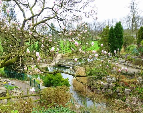 Ornamental garden at Avenham Park, Preston | by Tony Worrall