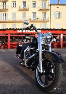 Saint-Tropez, Var, Provence   by Micleg44