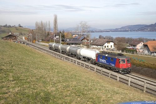 Re 420 288 SBB-CFF Cargo . Spiezmoos . 23.01.19.