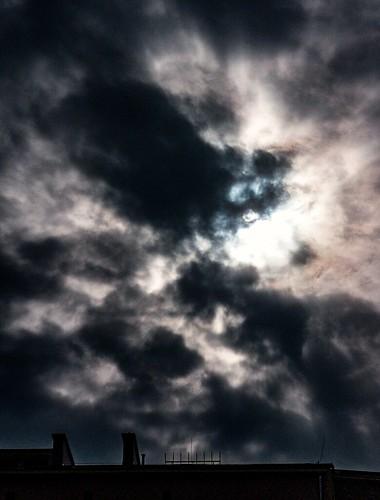 Wujek buroszary ogonem w chmurach Uncle cat   by Marat.Ph.Dakunin