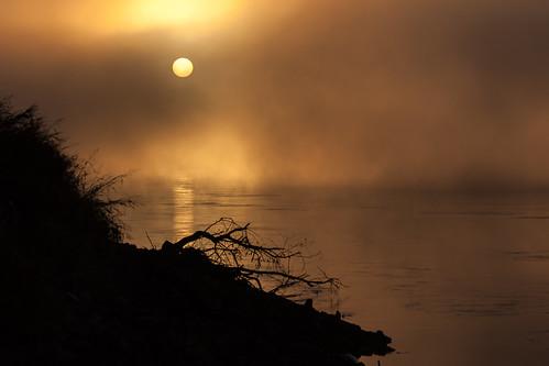 morning autumn sun english fog sunrise river dawn mo landing driftwood missouri parkville