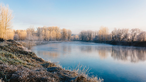 nature landscape cold snoqualmieriver trees frost carnation pacificnorthwest canoneos5dmarkiii sigma35mmf14dghsmart washington johnwestrock