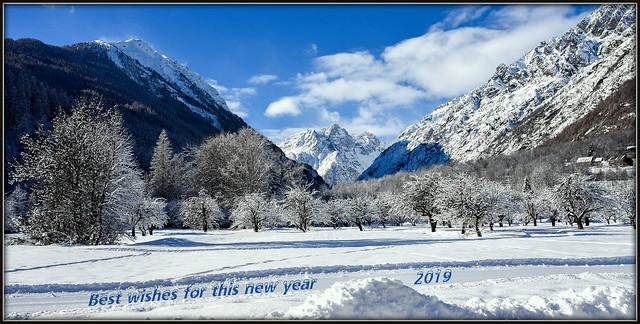 Meilleurs voeux et bonne année 2019 !