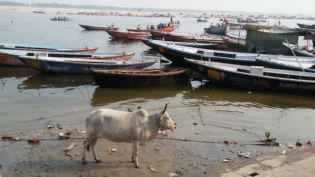 Varanasi by cellphone