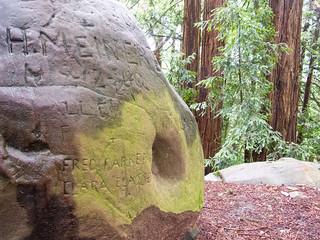 Redwood Peak | by Tom Holub