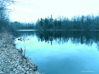 Pond on Cloudy Winter Day | by cordeliasmom2012