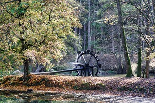 Waldnaabtal, Uppert Palatinate   by rgiw